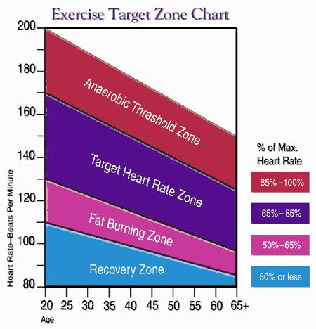 fat-burning-heart rate zone