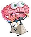 brain on a bike