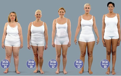 different body sizes